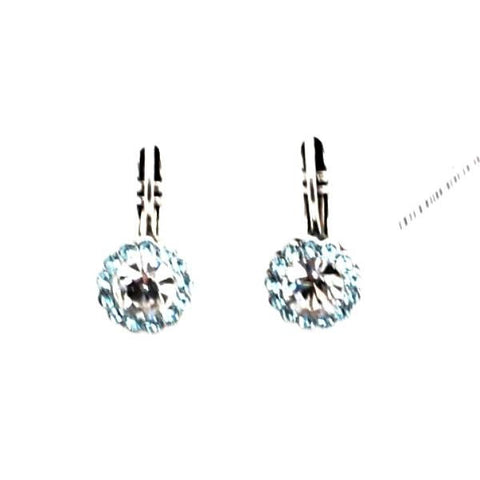 Aquamarine and Clear Small Round Crystal Earrings