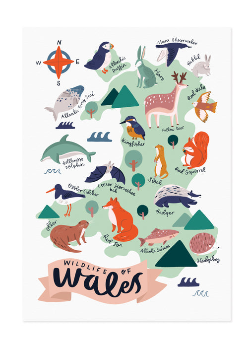 Wildlife of Wales Map Print