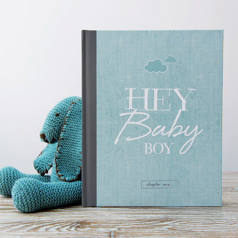 The Baby Book - boy baby journal