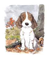 8 x 10 inch giclee print of a spaniel in the woods.