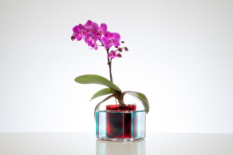 Caribe Red Vase