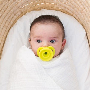 doddle & co pop pacifier