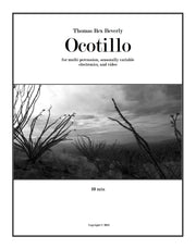Ocotillo for multi-percussion, seasonal electronics, and video (2013) - 10'