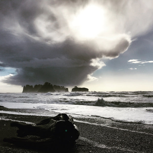 AMB16 Pacific Northwest: Storm Waves