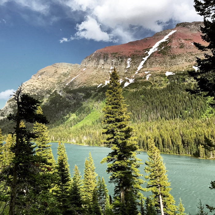 Northern Rockies: Quiet Nature - Sound Effects Library