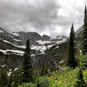 AMB12 Northern Rockies: Active Nature