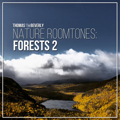 AMB38 Nature Roomtones: Forests 2