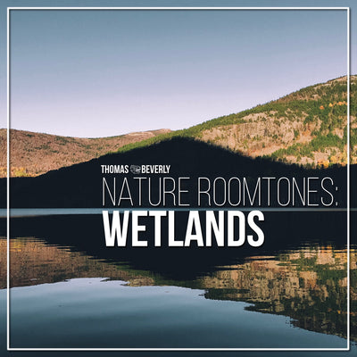 AMB40 Nature Roomtones: Wetlands