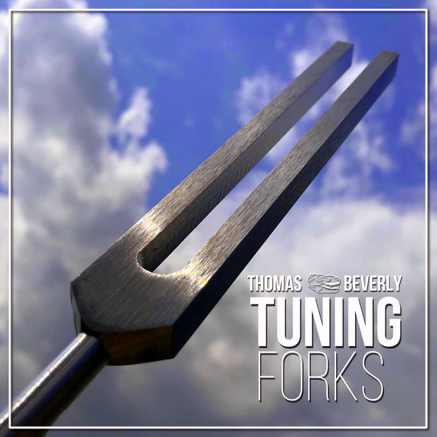 SD24 Tuning Forks