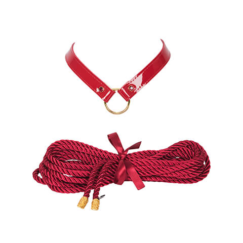 Restraints Collar and Rope