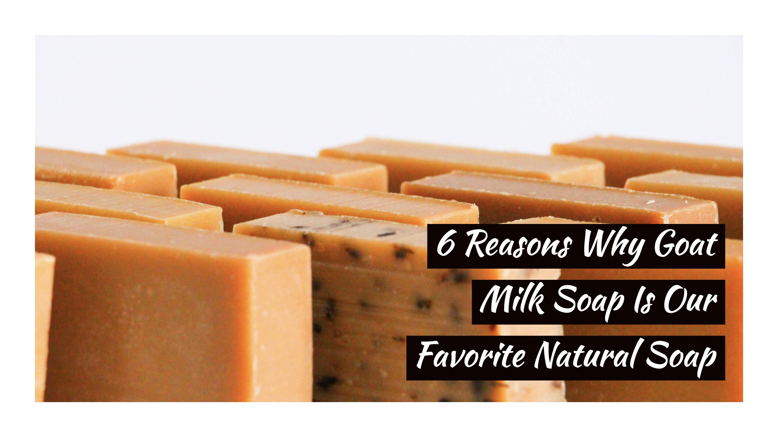 6 Reasons to Love Goat Milk Soap