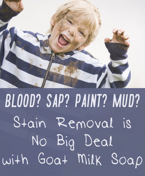 Blood? Sap? Paint? Mud? Stain Removal is No Big Deal with Goat Milk Soap - Bend Soap Company