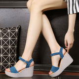 Stylish Casual Sandal Style Platform Wedges