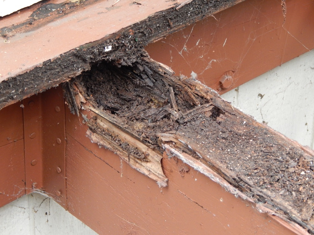 Deck structure joist and beam rot
