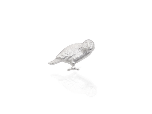 kakapo parrot pin brooch in silver
