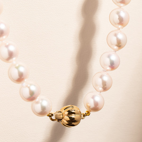 9ct Yellow Gold Akoya Pearl Strand - Walker & Hall