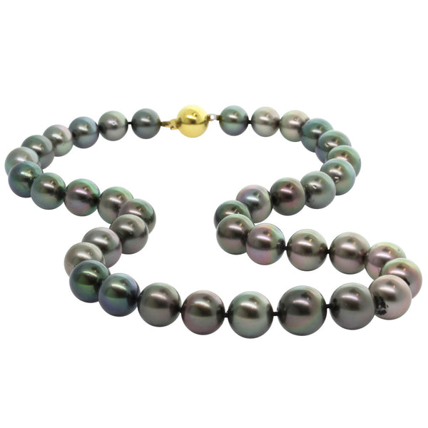 Tahitian Black Pearl Strand With 9ct Yellow Gold Clasp