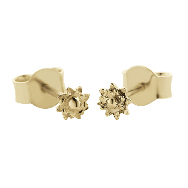 Meadowlark Protea Micro Studs - 9ct Yellow Gold - Walker & Hall
