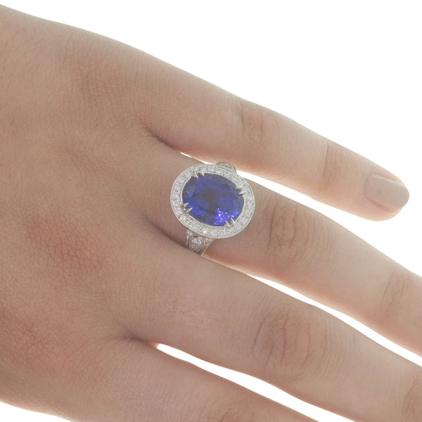 18ct White Gold 7.44ct Tanzanite & Diamond Halo Ring - Walker & Hall