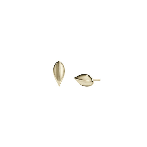 Meadowlark Leaf Stud Earrings Small - Gold Plated - Walker & Hall