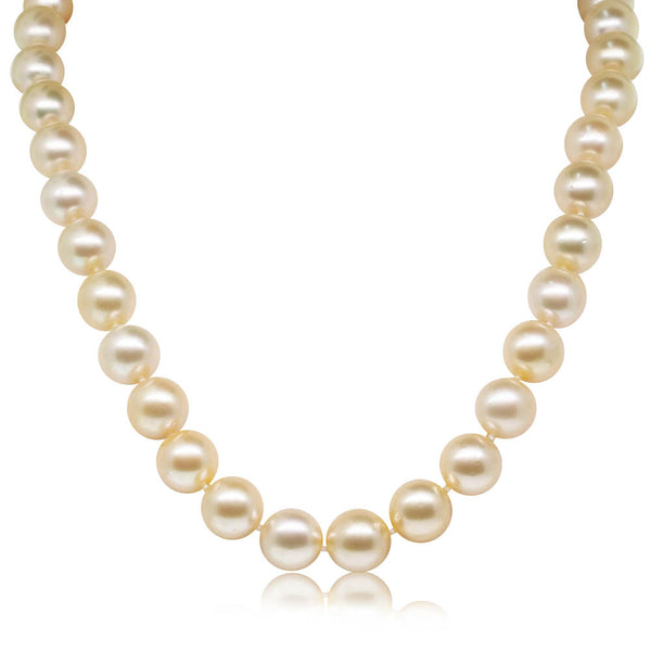 9ct Yellow Gold Golden Pearl Strand - Walker & Hall