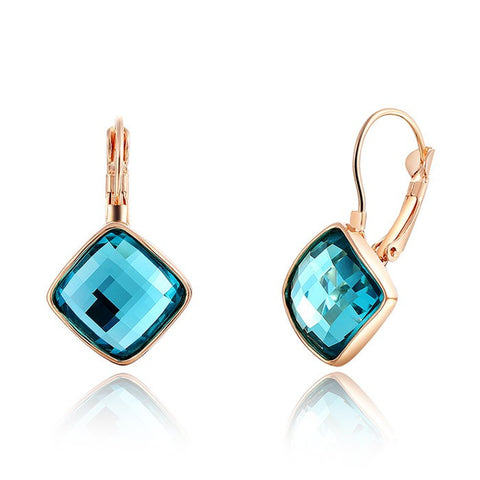 Beautiful Drop Earrings-Special Offer!