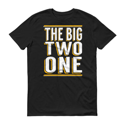 The BIG Two One Birthday T-Shirts