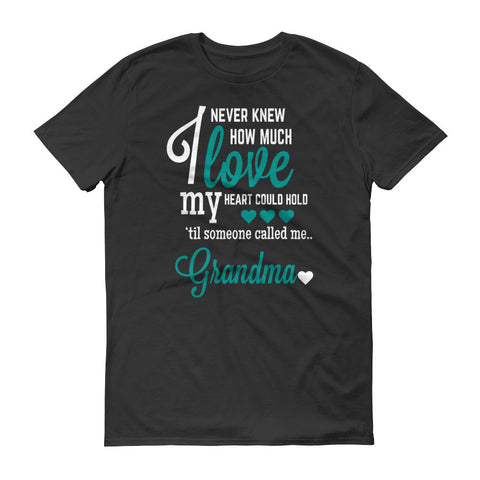 I Never Knew How Much Love My Heart Could Hold 'til Someone Called me Grandma T-Shirt
