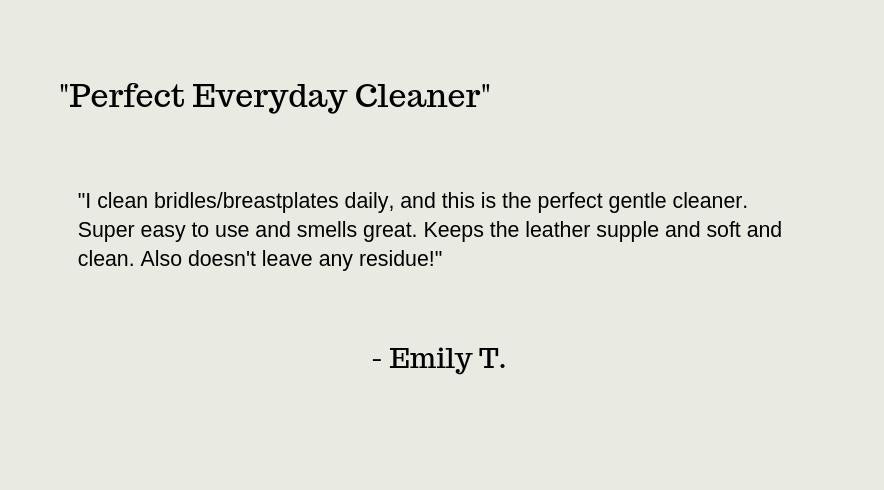 Review of Clearly Clean and Conditioned Leather Cleaner and Conditioner