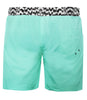 Boardshort in Mint