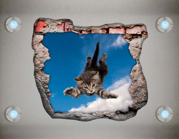 Adhesive Decorative Ceiling Vinyl - Cat