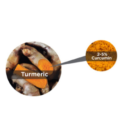 Turmeric VS Curcumin – What's the Difference?