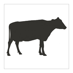 CW Pure Beef Treats Cotswold  50g