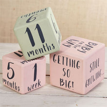 Load image into Gallery viewer, Mud Pie Milestone Blocks Pink / Girl