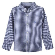 Andy and Evan Blue Gingham Buttondown Shirt