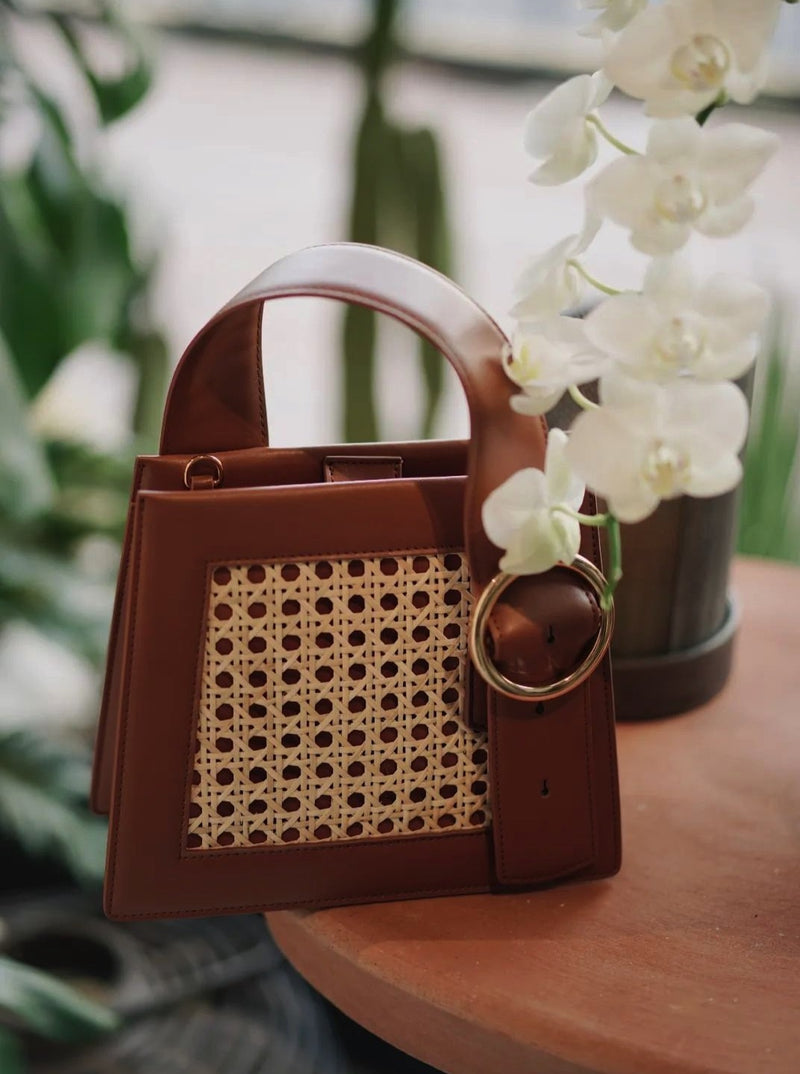 Enchanted Top Handle Bag in Bamboo Brown | Parisa Wang | Featured