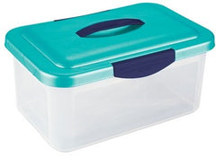 Debra Lynn Clear Storage Container With Lid + Handle