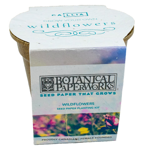 Botanical PaperWorks grow kit