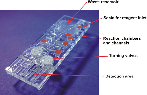 lab on a chip 3d printing