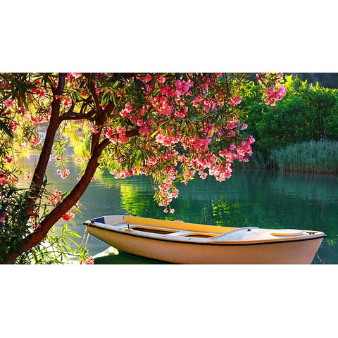 DIY Paint by Numbers Canvas Painting Kit for Kids & Adults - Sailing Boat Under Blooming Tree