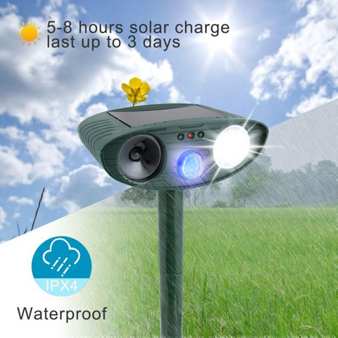 Raccoon Outdoor Ultrasonic Repeller - Solar Powered Ultrasonic Animal & Pest Repellant - Get Rid of Raccoons in 48 Hours or It's FREE