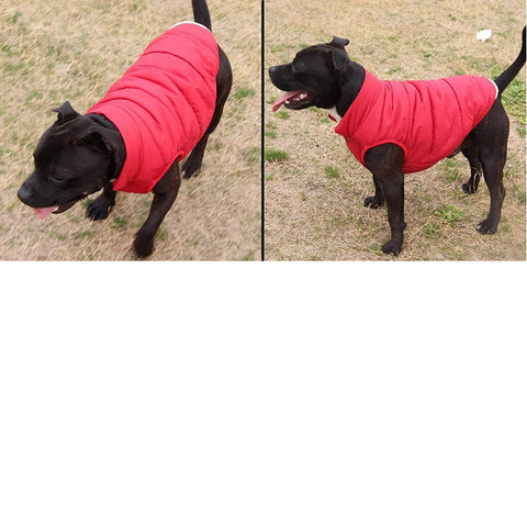 Double Layer Fleece Warm Dog Jacket Coat Vest - RED