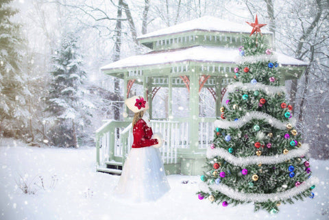 Christmas in the Park - Wooden Jigsaw Puzzles for Adults