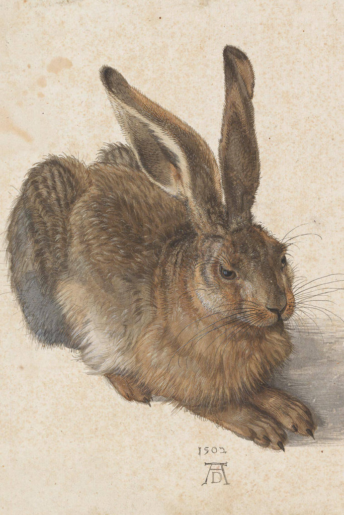 Young Hare by Albrecht Dürer - Peaceful Wooden Puzzles