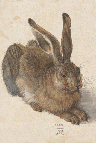 Young Hare by Albrecht Dürer - Wooden Jigsaw Puzzles for Adults