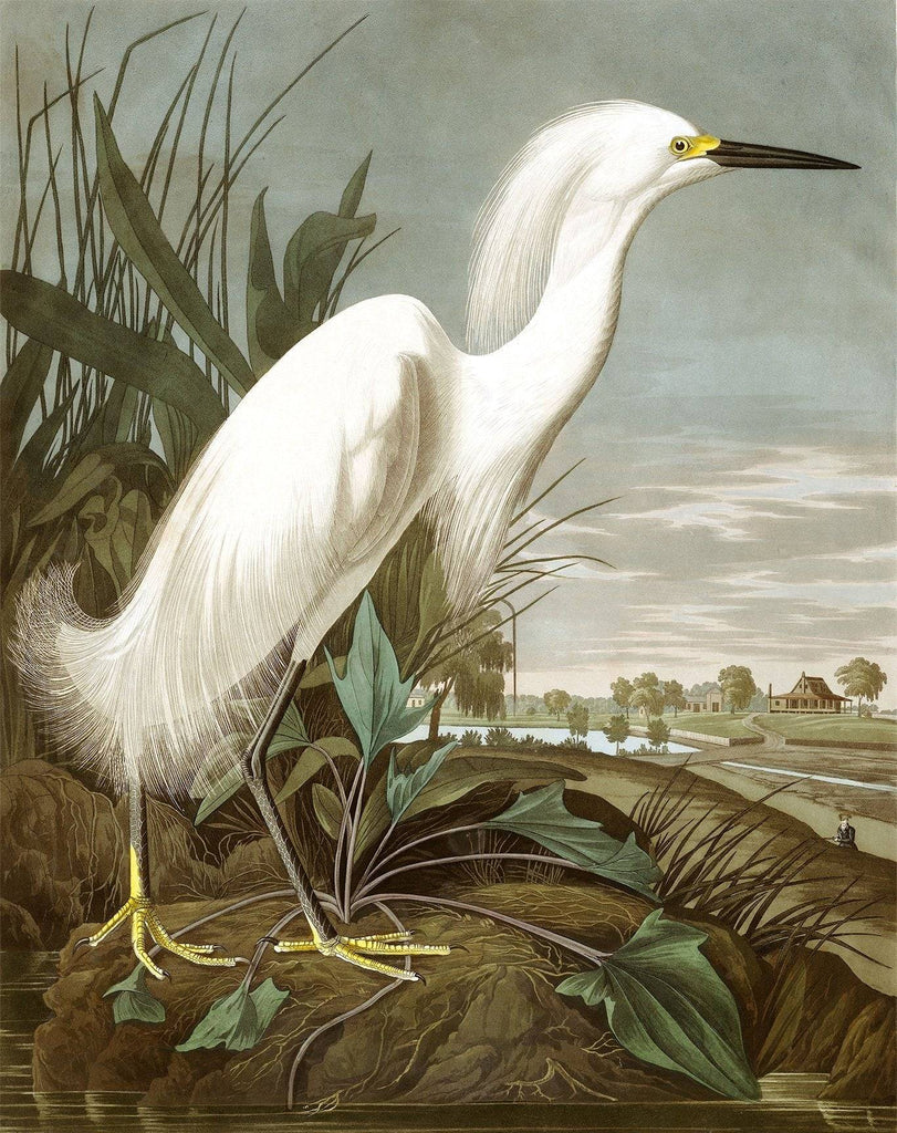 Snowy Heron Peaceful Wooden Puzzles
