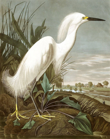 Snowy Heron - Wooden Jigsaw Puzzles for Adults
