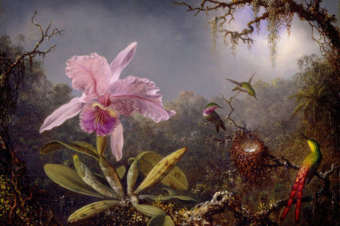 Hummingbirds and Orchids by Martin Johnson Heade - Wooden Jigsaw Puzzles for Adults