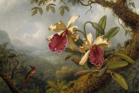 Hummingbird and Orchids by Martin Johnson Heade - Wooden Jigsaw Puzzles for Adults