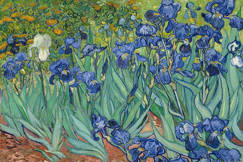 Irises in Garden by Van Gogh Peaceful Wooden Puzzles